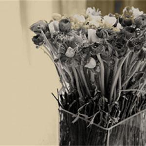 Fiori Numero 9 Milano.Numero Nove Floral Design